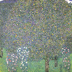 Gustav Klimt: Roses under the Trees c. 1905 • Oil on canvas, 110 x 110 cm • Musée d'Orsay, Paris; Réunion des Musées Nationaux • Photo: Gerard Blot • Photo Courtesy of Clark Art Institute  •