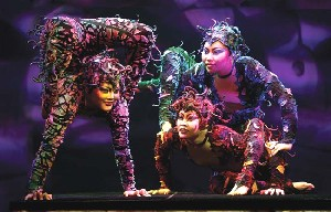 Contortionists from Cirque Dreams Jungle FantasyPhoto courtest of Cirque Dreams Jungle Fantasy