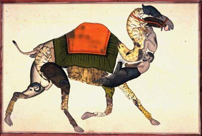 Anonymous Indian artist. Composite Camel, 19th centuryMiniatureAchenbach Foundation for Graphic Arts 1963.24.694