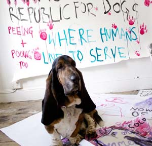 Anastasia Klose: <EM>Farnsworth's Republic For Dogs</EM>, 2014. Courtesy the artist