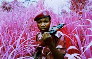 Film still from <EM>The Enclave</EM>, 2012-2013, showing a rebel from Mai Mai Yakutumba posing in Elephant Grass in Fizi, South Kivu, eastern Democratic Republic of Congo16 mm infrared film transferred to HD video, 39 minutes 25 secondsProduced in eastern Democratic Republic of Congo Director/Producer: Richard Mosse, Cinematographer/Editor: Trevor TweetenComposer/Sound Designer: Ben FrostCourtesy of the artist and Jack Shainman Gallery, New York.